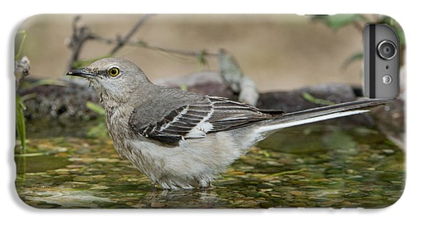 Mockingbird IPhone 6s Plus Case by Anthony Mercieca