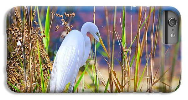 Natural Beauty IPhone 6s Plus Case by Adele Moscaritolo
