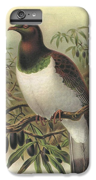 New Zealand Pigeon IPhone 6s Plus Case by J G Keulemans