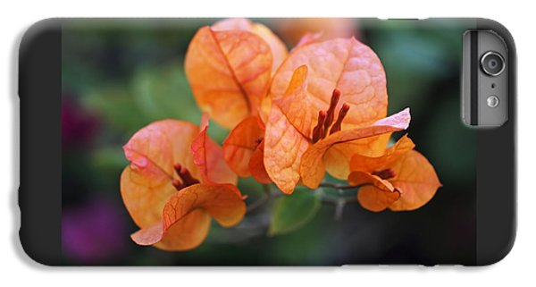 Orange Bougainvillea IPhone 6s Plus Case by Rona Black