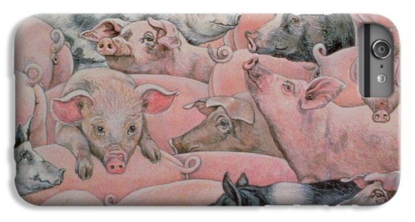 Pig Spread IPhone 6s Plus Case by Ditz