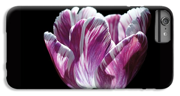 Purple And White Marbled Tulip IPhone 6s Plus Case by Rona Black