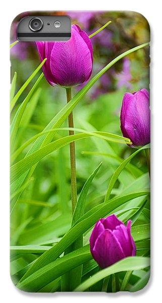 Purple Gems- Purple Tulips Rhode Island Tulips Purple Flower IPhone 6s Plus Case by Lourry Legarde