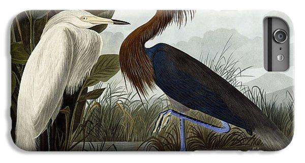 Purple Heron IPhone 6s Plus Case by John James Audubon