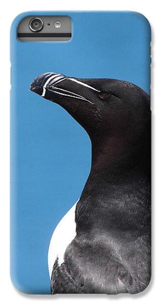 Razorbill Profile IPhone 6s Plus Case by Bruce J Robinson