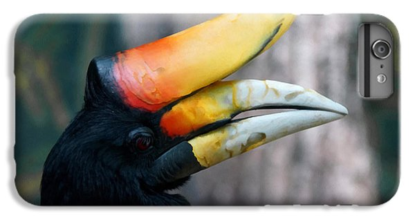 Rhinoceros Hornbill  IPhone 6s Plus Case by Ernie Echols