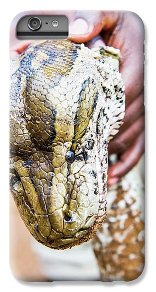 Rock Python Recovered From Poachers IPhone 6s Plus Case by Peter Chadwick
