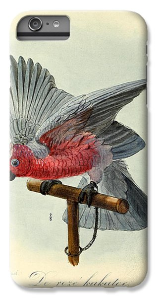 Rose Cockatoo IPhone 6s Plus Case by J G Keulemans