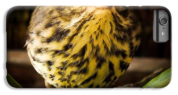 Round Warbler IPhone 6s Plus Case by Karen Wiles