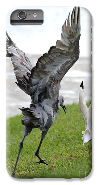 Sandhill Chasing Ibis IPhone 6s Plus Case by Carol Groenen