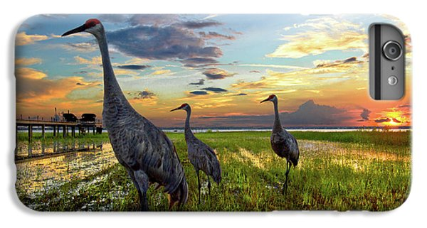 Sandhill Sunset IPhone 6s Plus Case by Debra and Dave Vanderlaan