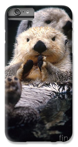 Sea Otter Pup IPhone 6s Plus Case by Mark Newman