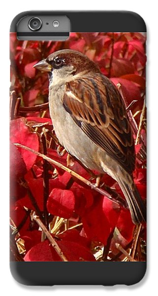Sparrow IPhone 6s Plus Case by Rona Black