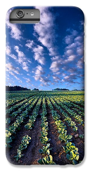 Spring Fresh IPhone 6s Plus Case by Phil Koch