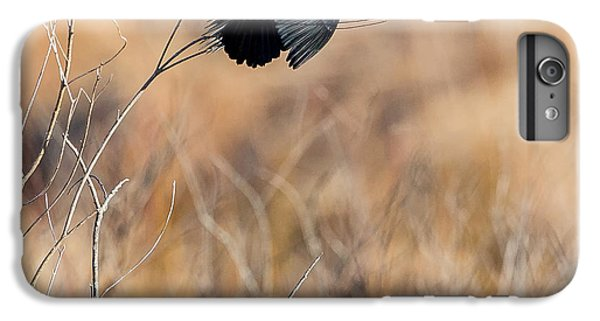 Springtime Song Square IPhone 6s Plus Case by Bill Wakeley