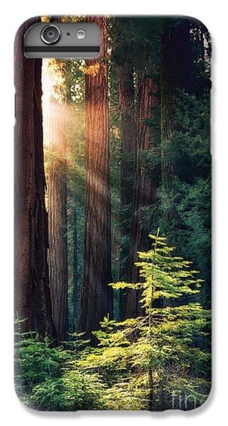 Sunlit From Heaven IPhone 6s Plus Case by Jane Rix