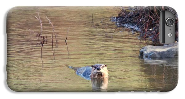 Sunrise Otter IPhone 6s Plus Case by Mike Dawson