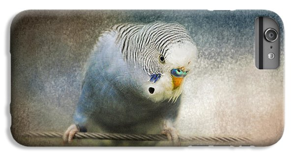 The Budgie Collection - Budgie 3 IPhone 6s Plus Case by Jai Johnson