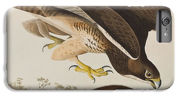 The Common Buzzard IPhone 6s Plus Case by John James Audubon