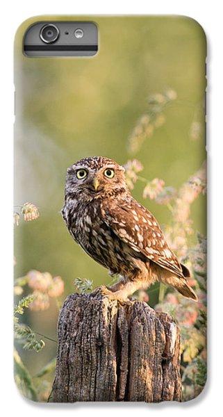 The Little Owl IPhone 6s Plus Case by Roeselien Raimond