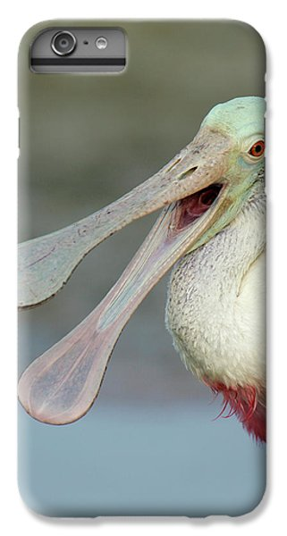 Usa, Florida, Fort De Soto Park IPhone 6s Plus Case by Jaynes Gallery