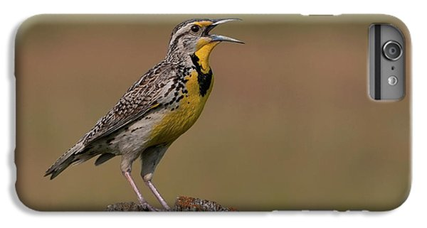 Western Meadowlark.. IPhone 6s Plus Case by Nina Stavlund