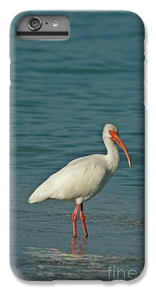 White Ibis IPhone 6s Plus Case by Cindi Ressler