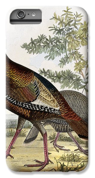 Wild Turkey IPhone 6s Plus Case by Titian Ramsey Peale