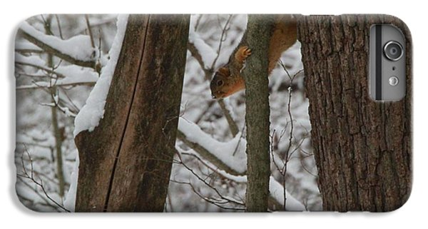 Winter Squirrel IPhone 6s Plus Case by Dan Sproul