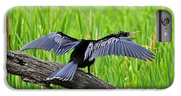 Wonderful Wings IPhone 6s Plus Case by Al Powell Photography USA