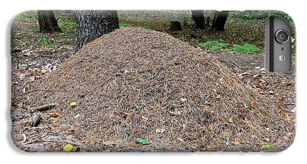 Wood Ant Nest IPhone 6s Plus Case by Bildagentur-online/mcphoto-schulz