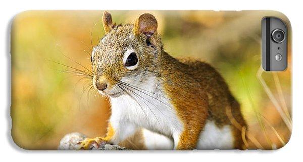 Cute Red Squirrel Closeup IPhone 6s Plus Case by Elena Elisseeva