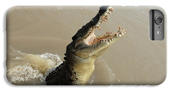 Salt Water Crocodile 2 IPhone 6s Plus Case by Bob Christopher
