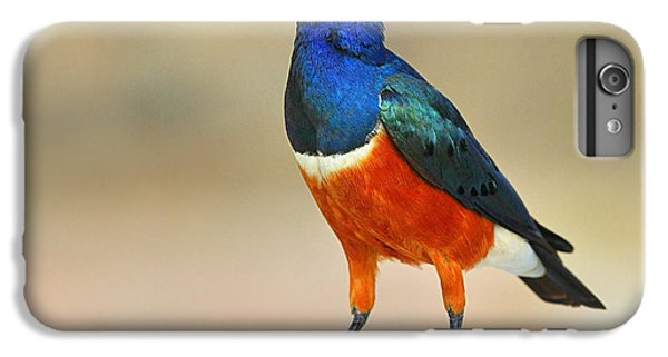 Superb IPhone 6s Plus Case by Tony Beck