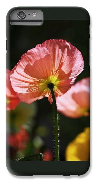Icelandic Poppies IPhone 6s Plus Case by Rona Black