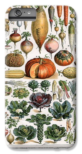 Illustration Of Vegetable Varieties IPhone 6s Plus Case by Alillot
