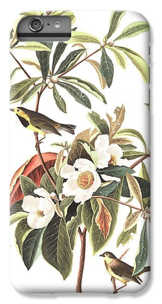 Bachman's Warbler  IPhone 6s Plus Case by John James Audubon