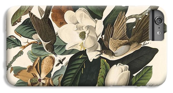 Black-billed Cuckoo IPhone 6s Plus Case by John James Audubon