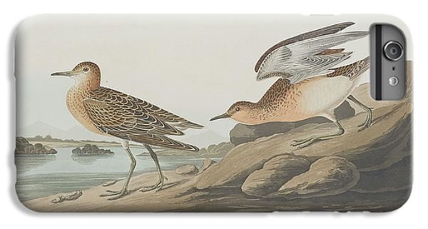 Buff-breasted Sandpiper IPhone 6s Plus Case by John James Audubon