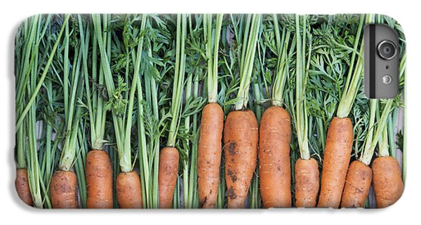 Carrots IPhone 6s Plus Case by Tim Gainey
