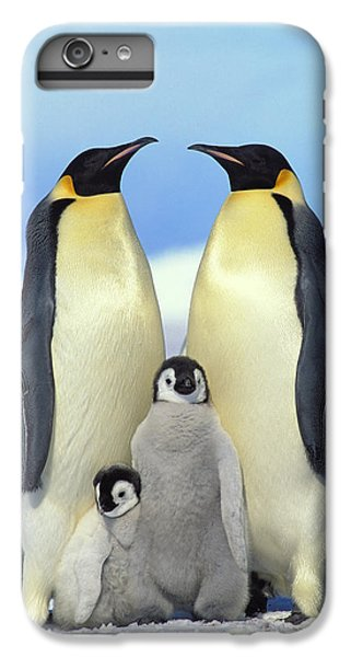 Emperor Penguin Aptenodytes Forsteri IPhone 6s Plus Case by Konrad Wothe