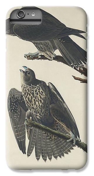 Labrador Falcon IPhone 6s Plus Case by John James Audubon