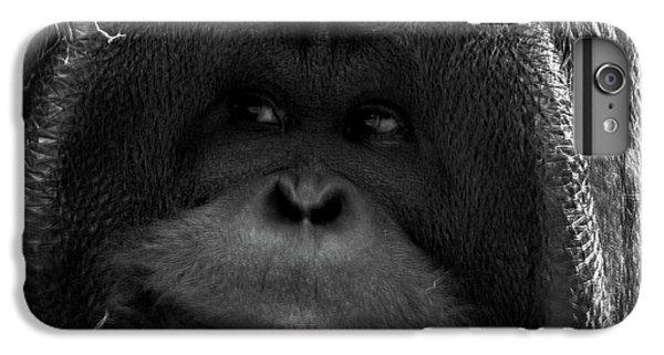 Orangutan IPhone 6s Plus Case by Martin Newman
