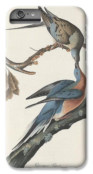 Passenger Pigeon IPhone 6s Plus Case by John James Audubon