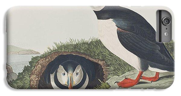 Puffin IPhone 6s Plus Case by John James Audubon