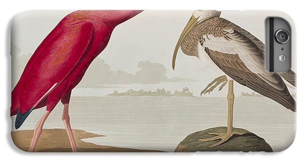 Scarlet Ibis IPhone 6s Plus Case by John James Audubon