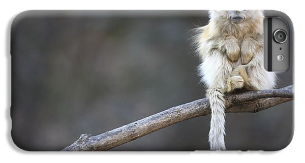 Golden Snub-nosed Monkey Rhinopithecus IPhone 6s Plus Case by Cyril Ruoso