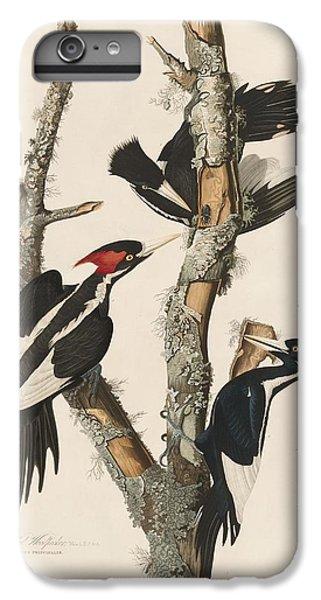 Ivory-billed Woodpecker IPhone 6s Plus Case by John James Audubon