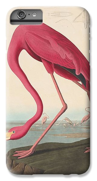 American Flamingo IPhone 6s Plus Case by John James Audubon