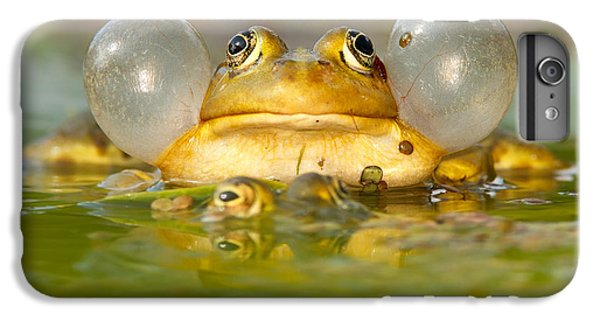 A Frog's Life IPhone 6s Plus Case by Roeselien Raimond